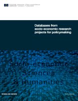 Tài liệu Databases from socio-economic research projects for policymaking pdf