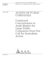 Tài liệu Continued Concentration in Audit Market for Large Public Companies Does Not Call for Immediate Action docx