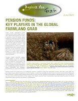 Tài liệu PENSION FUNDS: KEY PLAYERS IN THE GLOBAL FARMLAND GRAB pdf