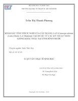 khảo sát tính thích nghi của cây hoàng lan [cananga odorata (lam.) hook. f. et thomson] tạo được từ các kỹ thuật nhân giống khác nhau tại tỉnh bình phước
