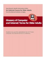 Tài liệu Glossary of Computer and Internet Terms for Older Adults pptx
