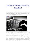 Tài liệu Internet Marketing Cơ Hội Nào Cho Bạn ? pptx
