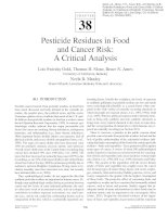 Tài liệu Pesticide Residues in Food and Cancer Risk: A Critical Analysis pdf