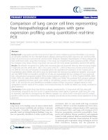 Tài liệu Comparison of lung cancer cell lines representing four histopathological subtypes with gene expression profiling using quantitative real-time PCR pptx