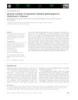 Tài liệu Báo cáo khoa học: Animal models of amyloid-b-related pathologies in Alzheimer's disease docx