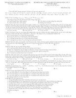 Tài liệu ĐỀ KIỂM TRA CHẤT LƯỢNG ÔN THI ĐẠI HỌC LẦN 3 MÔN HÓA HỌC - THPT QUỲNH LƯU 1 docx