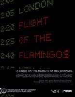 Tài liệu flight of the flamingos a study on the mobility of r d workers docx