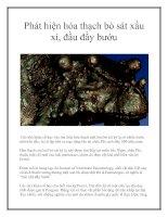 Tài liệu Phát hiện hóa thạch bò sát xấu xí, đầu đầy bướu pptx