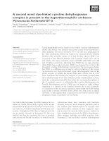 Tài liệu Báo cáo khoa học: A second novel dye-linked L-proline dehydrogenase complex is present in the hyperthermophilic archaeon Pyrococcus horikoshii OT-3 pptx