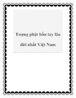 Tài liệu Tượng phật bốn tay lâu đời nhất Việt Nam doc