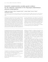 Tài liệu Báo cáo Y học: Interallelic complementation provides genetic evidence for the multimeric organization of the Phycomyces blakesleeanus phytoene dehydrogenase doc