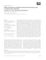 Tài liệu Báo cáo khoa học: DNA methylation-mediated nucleosome dynamics and oncogenic Ras signaling pptx