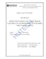 Tài liệu Luận văn:Phân tích năng lực cạnh tranh tại công ty cổ phần dây và cáp điện Việt Nam (CADIVI) pptx