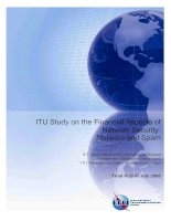 Tài liệu ITU Study on the Financial Aspects of Network Security: Malware and Spam doc