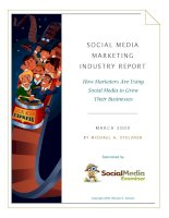 Tài liệu SOCIAL MEDIA MARKETING INDUSTRY RE PORT - How Marketers Are Using Social Media to Grow Their Businesses doc