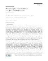 Tài liệu Photoreceptor Sensory Cilium and Associated Disorders pptx