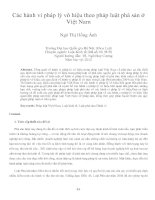 Các hành vi pháp lý vô hiệu theo pháp luật phá sản ở việt nam