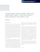 Tài liệu Central bank rates, market rates and retail bank rates in the euro area in the context of the recent crisis docx