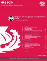 Tài liệu Diagnosis and management of head and neck cancer docx
