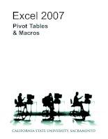 Tài liệu Excel 2007 pivot and macro pdf