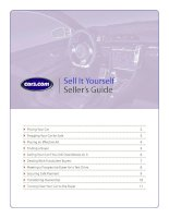 Tài liệu Sell It Yourself Seller's Guide pdf