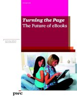 Tài liệu Turning the Page The Future of eBooks ppt