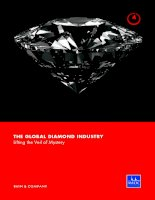 Tài liệu THE GLOBAL DIAMOND INDUSTRY Lifting the Veil of Mystery pdf