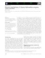Tài liệu Báo cáo khoa học: Reaction mechanisms of thiamin diphosphate enzymes: redox reactions pdf