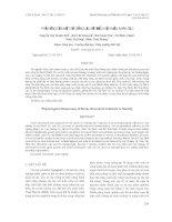 Tài liệu PHẢN ỨNG CỦA MỘT SỐ GIỐNG LẠC VỚI ĐIỀU KIỆN MẶN NHÂN TẠO pot