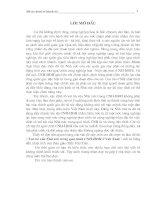 vai trò của nhà nước trong quá trình cnh-hđh ở việt nam