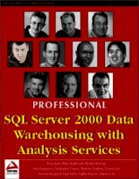 Tài liệu Professional SQL Server 2000 Data Warehousing with Analysis Services docx