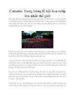 Tài liệu Canada: Tưng bừng lễ hội hoa tulip lớn nhất thế giới ppt
