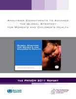 Tài liệu Analysing Commitments to Advance the Global Strategy for Women's and Children's Health pdf