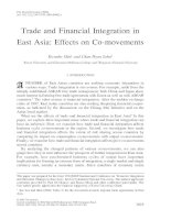 Tài liệu Trade and Financial Integration in East Asia: Effects on Co-movements docx