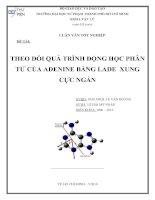 theo dỏi quá trình động học phân tử của adenine bằng lade xung cực ngắn
