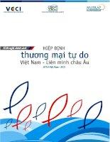 Tài liệu Hiệp định thương mại tư do Việt Nam- liên minh Châu Âu pot