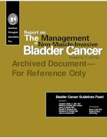 Tài liệu Report on The Management of Non-Muscle-Invasive Bladder Cancer ppt
