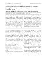 Tài liệu Báo cáo khoa học: Unique features of recombinant heme oxygenase of Drosophila melanogaster compared with those of other heme oxygenases studied docx