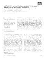 Tài liệu Báo cáo khoa học: Expression of an a-1,3-glucanase during mycoparasitic interaction of Trichoderma asperellum docx