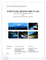 Tài liệu STRATEGIC MARKETING PLAN - Overcoming Development Barriers and Positioning Castle Rockfor Success ppt