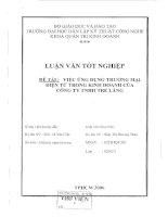 Luận văn Việc ứng dụng thương mại điện tử trong kinh doanh của công ty TNHH Tre Làng