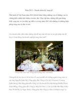 Tài liệu Năm 2013 – Doanh nhân kỳ vọng gì? ppt