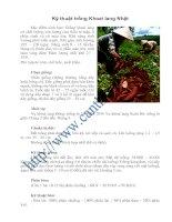 Tài liệu Kỹ thuật trồng Khoai lang Nhật pptx