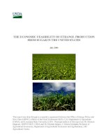 Tài liệu THE ECONOMIC FEASIBILITY OF ETHANOL PRODUCTION FROM SUGAR IN THE UNITED STATES docx