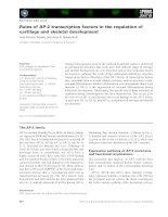 Tài liệu Báo cáo khoa học: Roles of AP-2 transcription factors in the regulation of cartilage and skeletal development doc