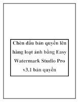 Tài liệu Chèn dấu bản quyền lên hàng loạt ảnh bằng Easy Watermark Studio Pro v3.1 bản quyền ppt