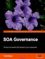 Tài liệu SOA Governance: The key to successful SOA adoption in your organization doc