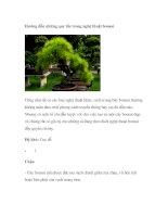 Tài liệu Hướng dẫn những quy tắc trong nghệ thuật bonsai docx