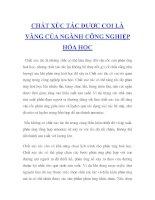 Tài liệu CHẤT XÚC TÁC ĐƯỢC COI LÀ VÀNG CỦA NGÀNH CÔNG NGHIỆP HÓA HỌC docx