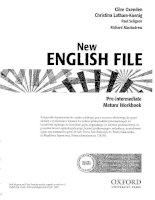 New english file wb (pre int)